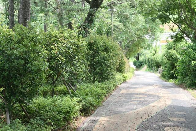 예능 1박2일 촬영장소 모충공원